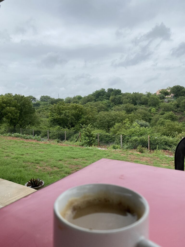 Blogging from Hills Covered in Greenery